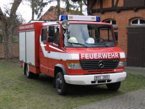 TSF-W Schapen